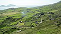 Farraniaragh, Deenish & Scariff Islands, Ring of Kerry (506580) (27500590974).jpg