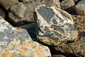 Fault Breccia from Galicia Spain 2.jpg