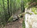 Felsenpfad Kirkel IMG 0597.JPG