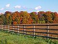Fenced in (8067621404).jpg