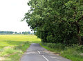 Field and road at Theydon Mount Essex England.JPG