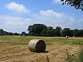 Field with baled hay, Farleigh Wallop - geograph.org.uk - 1556130.jpg