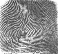 Fingerprinting: A Lesson on Classification