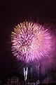 Fireworks - July 4, 2010 (4773784162).jpg