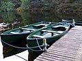Fishing Boats at Millbuies - geograph.org.uk - 1347561.jpg