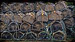 Fishing spheres (8045699530).jpg