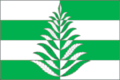 Flag of Belavinskoe (Moscow oblast).png