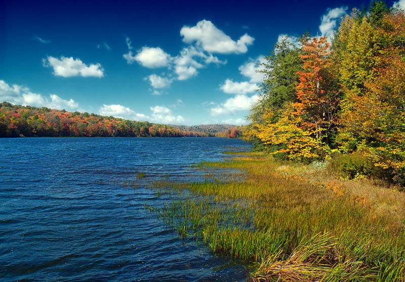 File:Flickr - Nicholas T - Lakeside (1).jpg