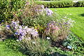 Flower bed - Bergianska trädgården - Stockholm, Sweden - DSC00243.JPG