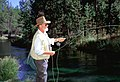 Fly Fishing on Fall River, Deschutes National Forest (35529964243).jpg