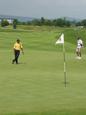 Jeev Milkha Singh - Singh at the Austrian Open 2008