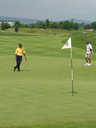 Jeev Milkha Singh - Singh at the Austrian Open 2008