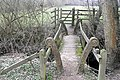 Footbridge within Ashford Hill Meadows Nature Reserve - geograph.org.uk - 1222317.jpg