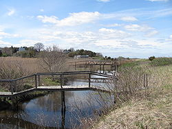 Footbridges over the Eel River, Warren Cove MA.jpg