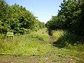 Footpath - geograph.org.uk - 1369506.jpg