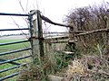 Footpath and stile near Rockbourne - geograph.org.uk - 1160922.jpg