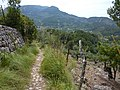 Footpath near Soller - panoramio.jpg
