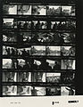 Ford B1893 NLGRF photo contact sheet (1976-10-16)(Gerald Ford Library).jpg