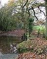 Ford and Footbridge crossing Cleobury Brook, Shropshire - geograph.org.uk - 615585.jpg