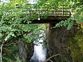 Forestry Bridge over Glenkin Burn - geograph.org.uk - 1357899.jpg