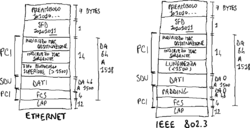 Formato PDU Ethernet vs. IEEE 802.3.png