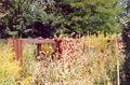 France Loir-et-Cher Festival jardins Chaumont-sur-Loire 2003 Penitencier des mauvaises herbes 02.jpg