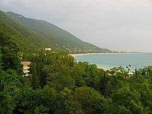 Caucasian Riviera - Black Sea coast with subtropical flora in Gagra