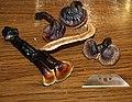Ganoderma microsporum R.S. Hseu 504572.jpg