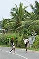 Garçons jouant au football sur la route de Micoló (São Tomé).jpg