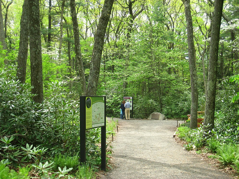 Garden in the Woods - IMG 2451