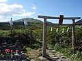 Gassan honguu torii.jpg