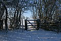 Gate on public footpath - geograph.org.uk - 1650324.jpg