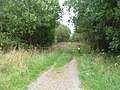 Gated Forest Track - geograph.org.uk - 1502409.jpg