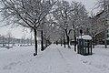 Geneve Sous la neige - 2013 - panoramio (10).jpg