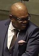 Geoff Makhubo, Mayor of Johannesburg.jpg