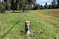 Georgia State Route 76 roadside park, Morven 7.jpg