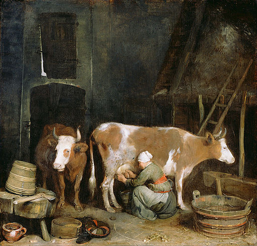 Gerard ter Borch (Dutch - A Maid Milking a Cow in a Barn - Google Art Project
