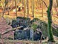 Gesprengter Bunker im Beckinger Wald 11.jpg