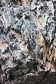 Gesteine am Ufer der Urft im Nationalpark Eifel-3525.jpg