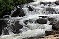 Gfp-new-york-adirondack-mountains-close-up-of-cascading-brook.jpg