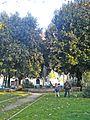 Giardino Piazza Ciardi.jpg