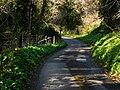 Glen Maye, evening sunlight - geograph.org.uk - 779184.jpg