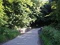 Glenbervie Bridge - geograph.org.uk - 1387735.jpg