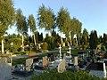 Glogow, Poland - panoramio (58).jpg