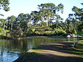 Golden Gate Park 01.JPG