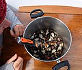 Gooseneck barnacles (26924764373).jpg