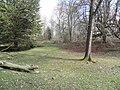 Gosford Forest Park, Markethill - geograph.org.uk - 1952045.jpg