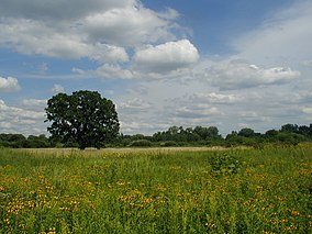 Gov. Nelson prairie 2.jpg