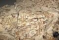 Graphic granite (runite) 3 (48751625161).jpg