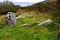 Graves of the Leinstermen (2) - geograph.org.uk - 2611228.jpg